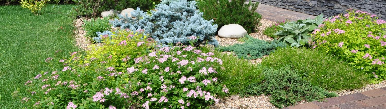 Форест — ландшафтный дизайн вашего сада!