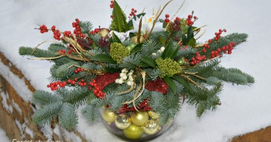 Новогоднее украшение дома и сада